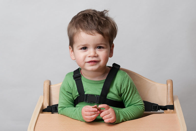 5 point high chair harness