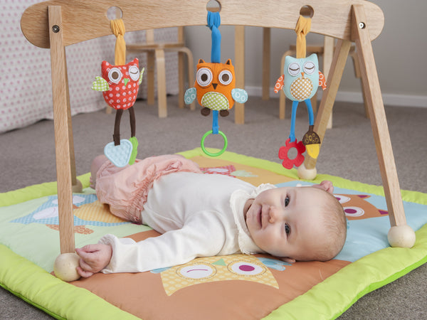 Wooden Baby Play Gym and Mat