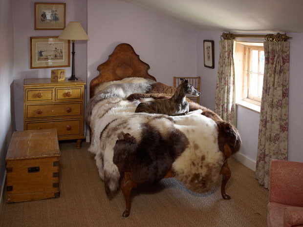Sheepskin rugs and sheepskin throws