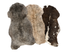 Individual Rare Breed Sheepskin Rug