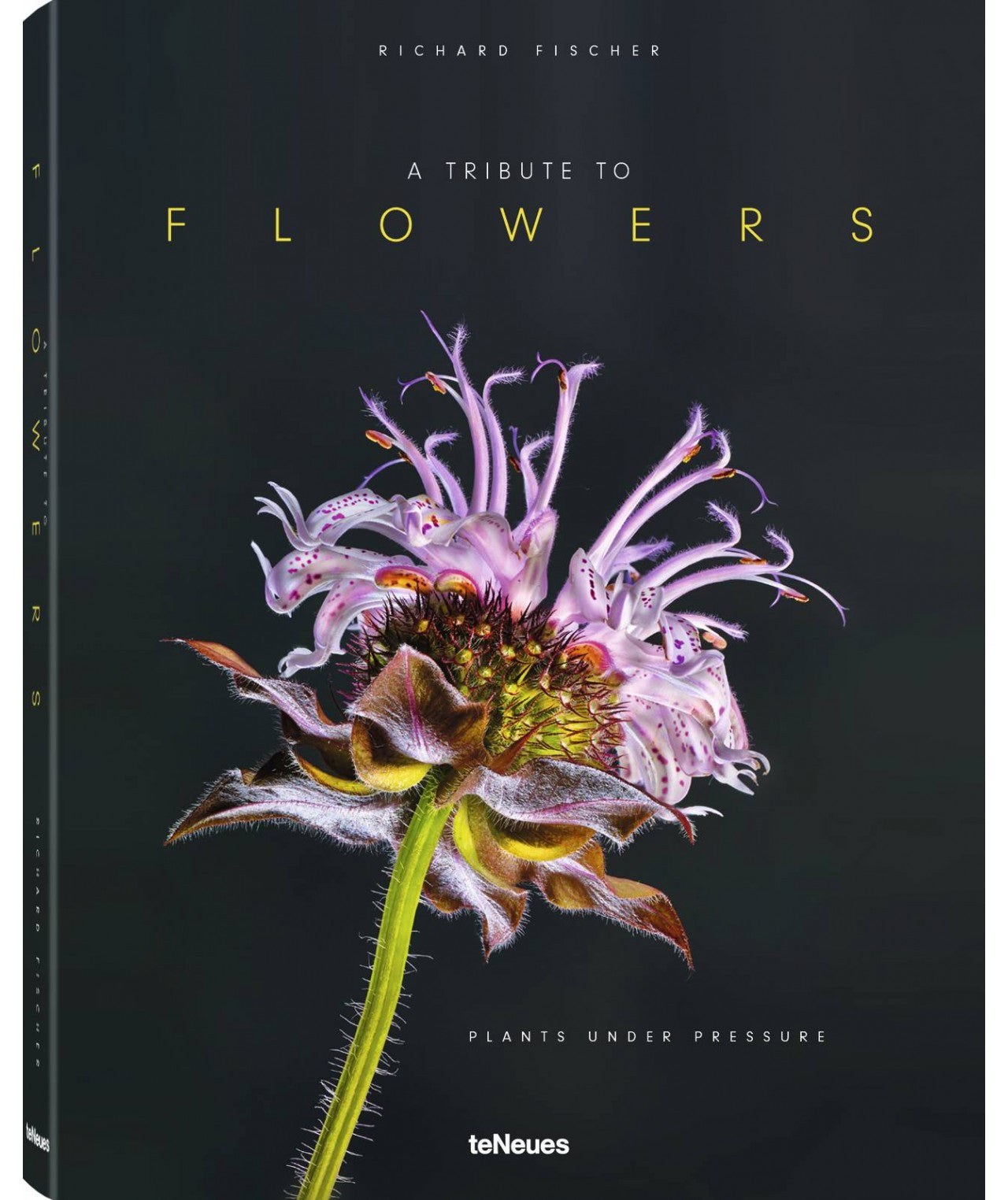 A Tribute to Flowers by Richard Fischer