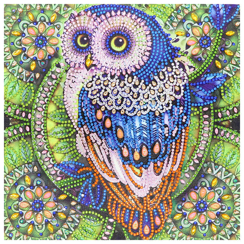 Owl 30x30cm(canvas) beautiful special shaped drill diamond painting