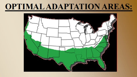 Optimal Adaptation Areas
