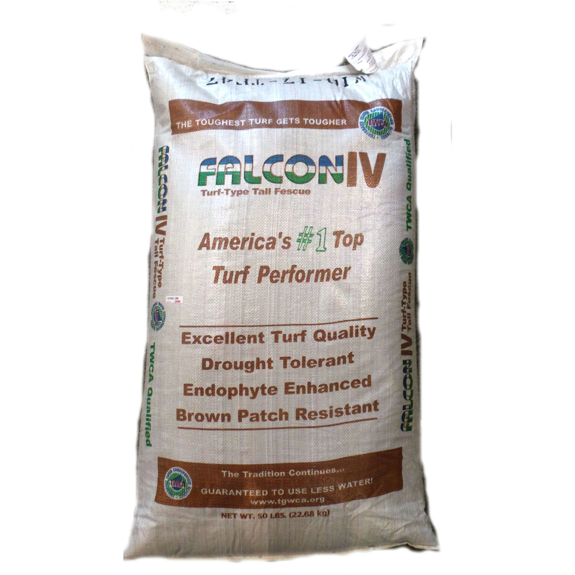 Falcon IV Turf Type Tall Fescue Grass Seed - 50 lbs. - Seed World