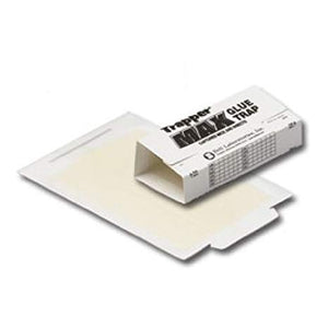 Trapper Max Glue Trap for Mice and Insects - 12 boards