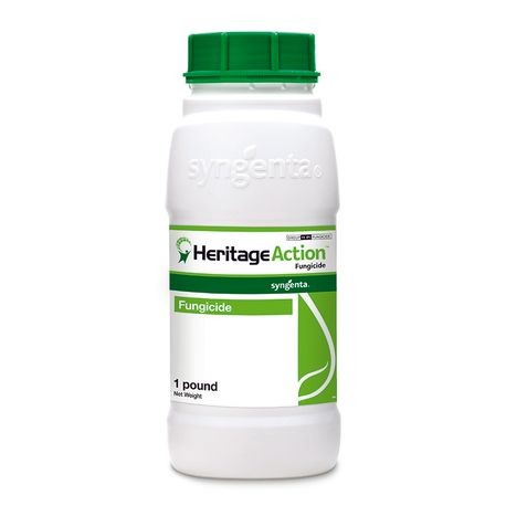Heritage Action - 1 Lb - Seed World