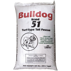 Bulldog 51 Tall Fescue Grass Seed