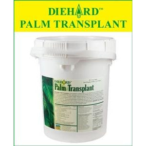 Diehard Palm Transplant Fertilizer