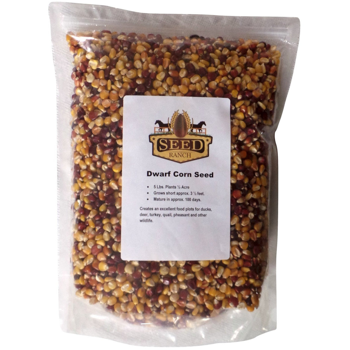 Dwarf Corn Food Plot Seed - 1 Lb.