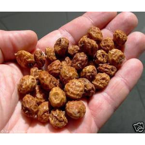 Chufa Seed (Seed Ranch)