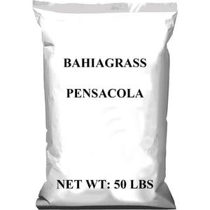 Pensacola Bahia Grass Seed (Raw) - Seed World