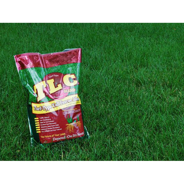 T.L.C. Tall Fescue Grass Seed Blend - 1 Lb. - Seed World
