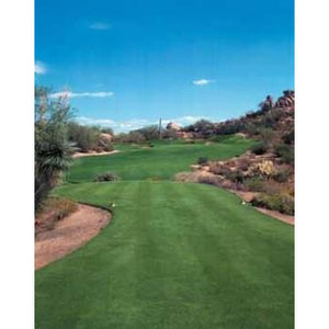 Yukon Turf Type Bermuda Grass Seed - Seed World