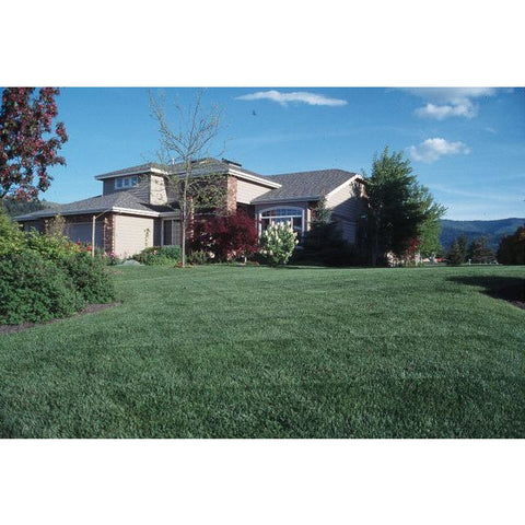 Award Kentucky Bluegrass Seed - 50 lbs