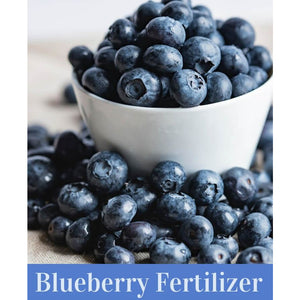 Special Blueberry 12-6-8 Fertilizer - 50 lbs. - Seed World