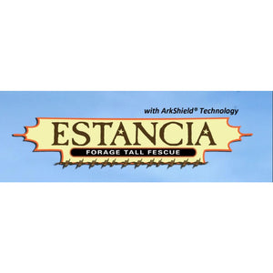 Estancia Forage Tall Fescue - 25lbs - Seed World