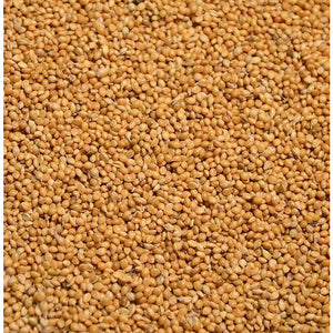 Golden German Millet - 50lbs. - Seed World