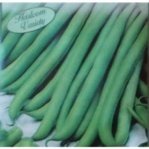 Garden Bean Tendergreen Improved Seed Heirloom - 1 Packet