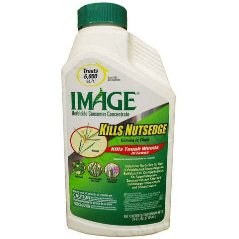 Image Nutsedge Herbicide Concentrate - 24 oz.
