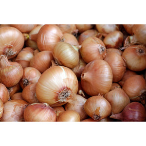 yellow sweet spanish onions