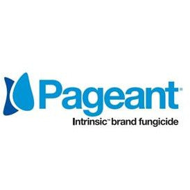 Pageant Intrinsic Brand Fungicide