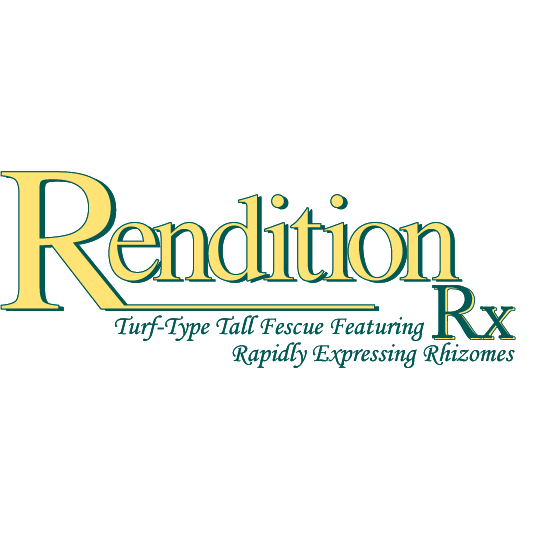 Rendition Turf-type Tall Fescue Grass Seeds - 50 lbs.