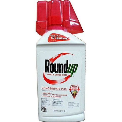 Roundup Weed & Grass Killer Concentrate - 32oz.