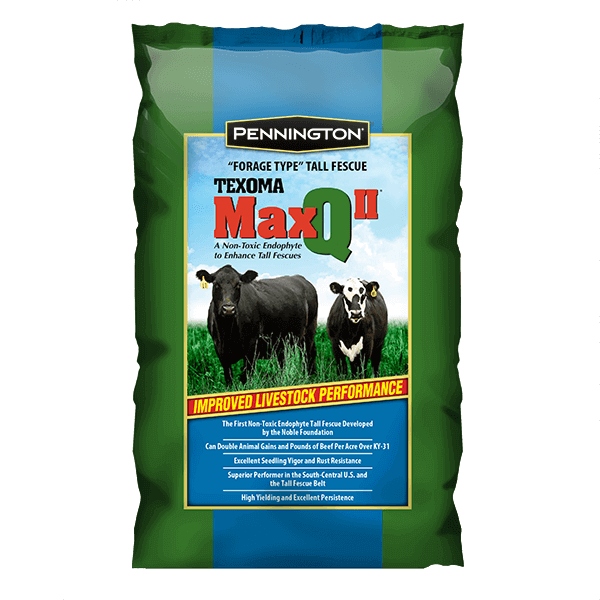 MaxQ II Tall Fescue Perennial Grass - 25 lbs. - Seed World