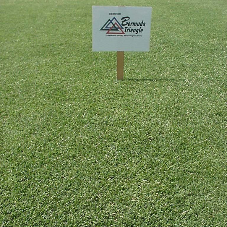 Pennington Triangle Bermuda Grass Seed For Sale Seed World