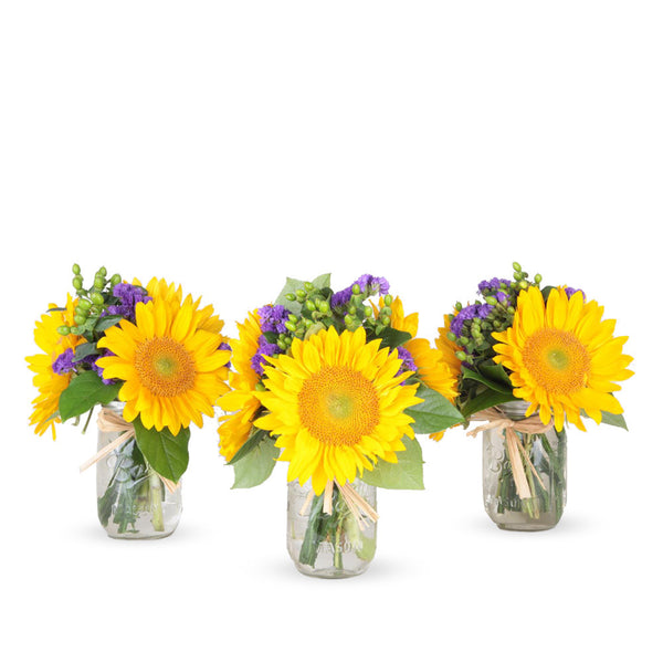 Color POP - 3 Mason Jar Bouquet