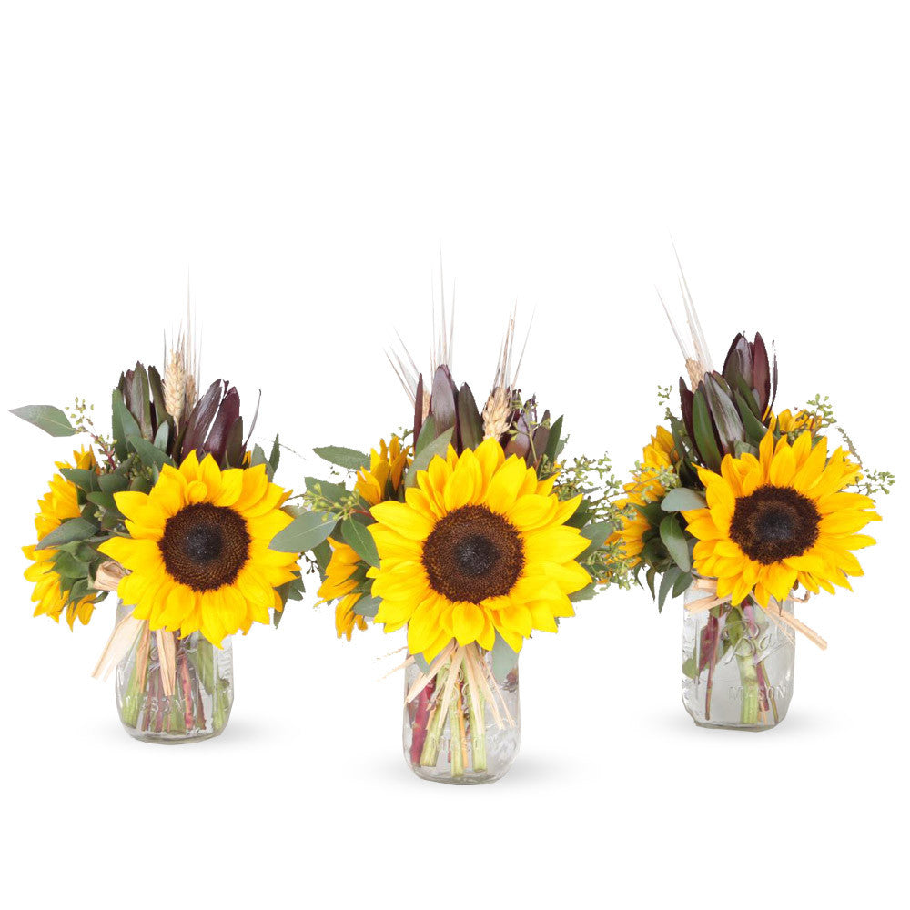 Special of Wagon Wheel - 3 Mason Jar Bouquet