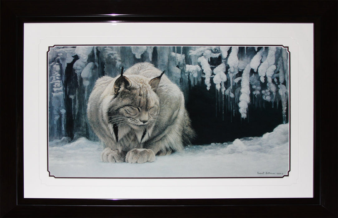Dozing Lynx by Robert Bateman Fine Art Print in Deluxe Collector Frame Finish