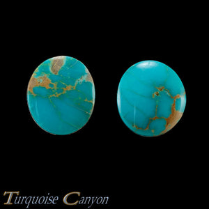 Set of Two Natural Kingman Mine Loose Turquoise Stones 30.0ct SKU227138