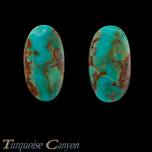Set of Two Natural Kingman Mine Loose Turquoise Stones 27.5ct SKU227144