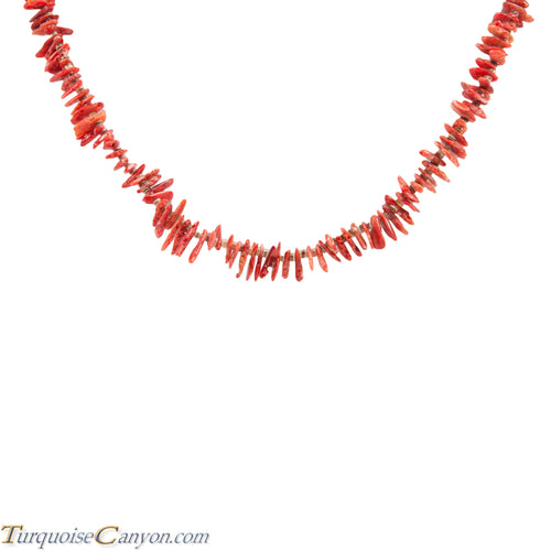 Santo Domingo Pen Shell Heishi and Orange Shell Necklace by Atencio SKU227986