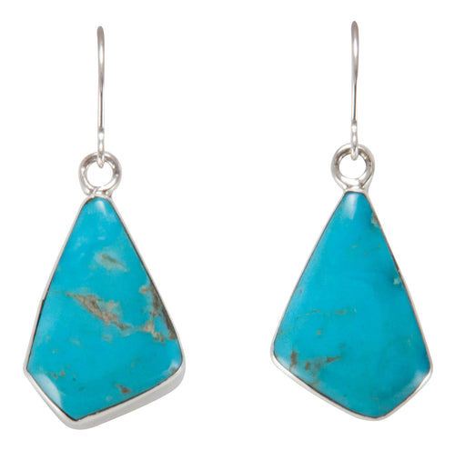 Navajo Native American Turquoise Mountain Turquoise Earrings by Lee SKU230649