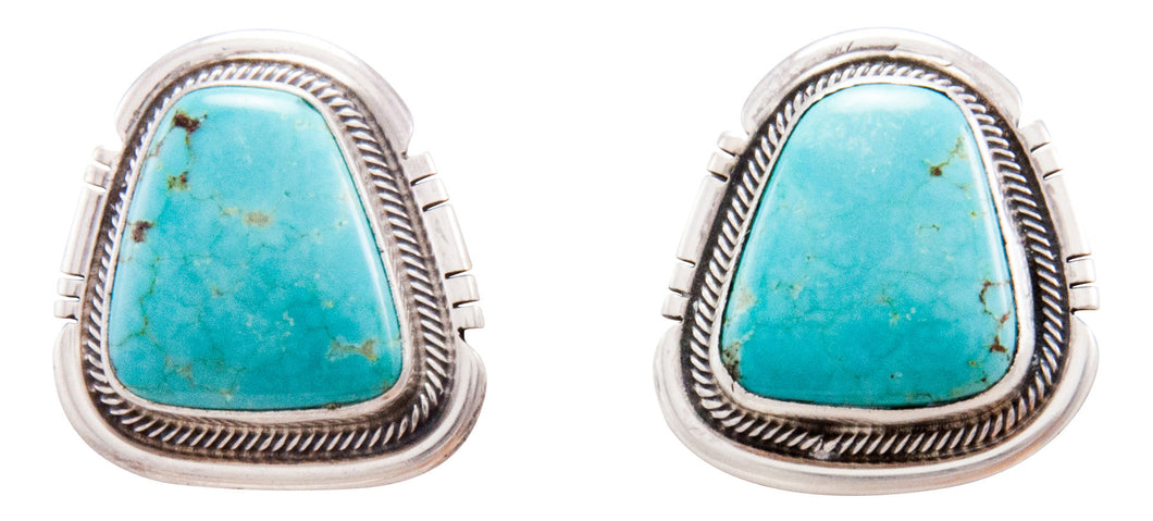 Navajo Native American Kingman Turquoise Earrings by Kevin Willie SKU232290