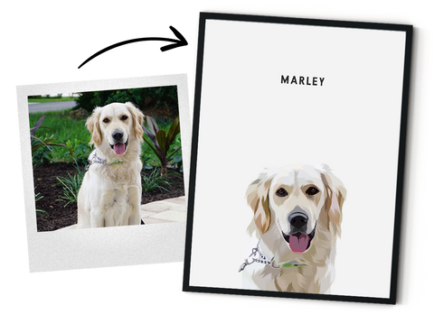 Pet Portraits Custom Illustrated From Your Digital Photos Poster Only West Willow