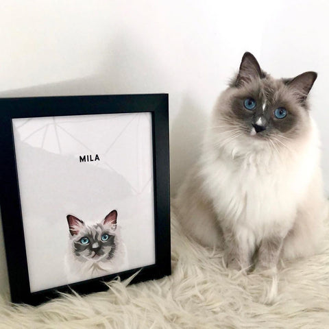 cat-paintings