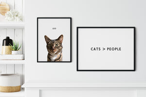 Cats > People