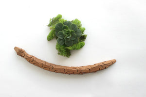 Wooden Toy Snake