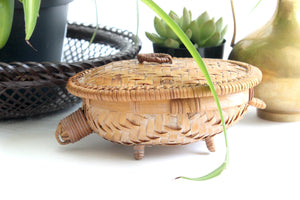 Vintage Turtle Basket, Natural Woven Decor, Jewelry Storage