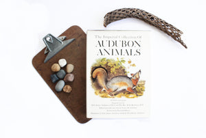 Vintage Hardcover Reference Book, The Imperial Collection of Audubon Animals, Full Color Prints