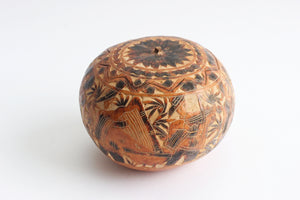 Decorative Gourd, Natural Fall Decor, Polynesian Inspired