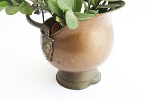 Vintage Brass Coal Scuttle, Indoor Planter, Flower Pot