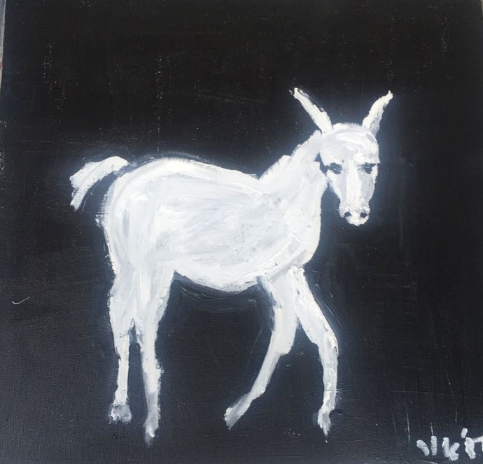 Small White Donkey