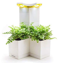 Load image into Gallery viewer, LeGrow Self-Watering Indoor Planter - Garden Tower with Artificial Sunlight - 5 Patented Design Plant Pots, 2 Bottom Connectors, 1 Plant Growth Lamp, 1 Water Holding Base Tray - (Plants Not Included)