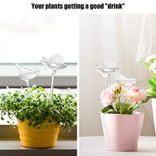 Load image into Gallery viewer, Plant Watering Bulbs (2 Pack) Glass Self-Watering Stakes Water Globe Automatic Irrigation Device For Indoor Outdoor Plants Garden Patio Flower Pot Hanging Planters