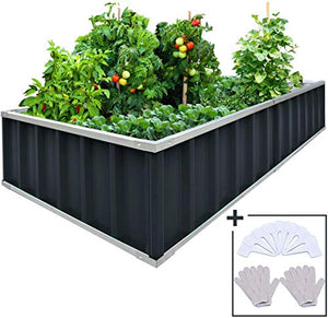 "KING BIRD Extra-Thick 2-Ply Reinforced Card Frame Raised Garden Bed Galvanized Steel Metal Planter Kit Box Green 68""x 36""x 12"" with 8pcs T-Types Tag & 2 Pairs of Gloves (Grey)"