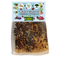C & C 1500 Live Ladybugs for Garden - Bag of Live Ladybugs - Ladybugs for Sale - 1500 Ladybugs - Guaranteed Live Delivery